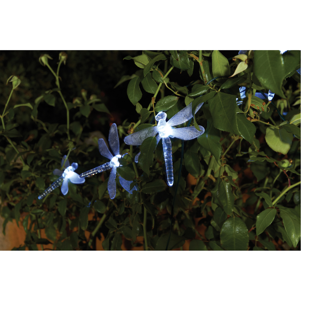 Patio Lights At Harbor Freight: Solar Dragonfly LED String Light