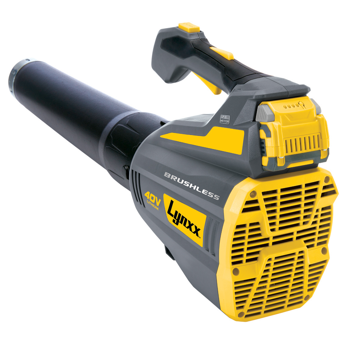 High Powered Blower : V lithium cordless blower